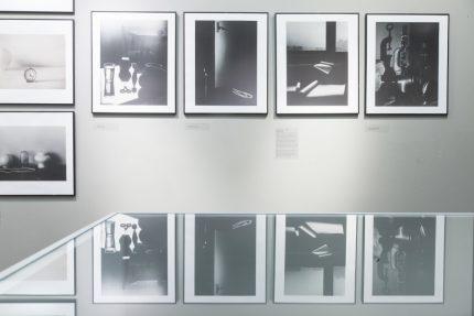 """Remigijaus Pačėsos paroda """"Geltona gulbė neatplauks"""" Fotografijos muziejuje"""