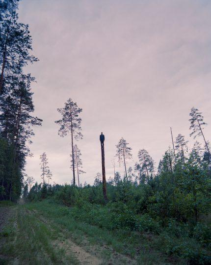 """Jaunojo kūrėjo eteris: Andrej Polukord projekto """"Miško statulos"""" pristatymas"""